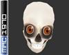 Anyskin Skull (bald)