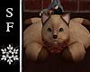 SF~ Cozy Cat Rug 1