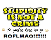 stupidity is not a crime