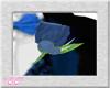 *CC* Blue/Silver Bnhole