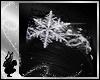 SnowQueen - Crown