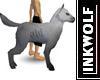 Grey Wolf-Dog
