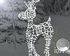 """Iv""""Baby Reindeer"""