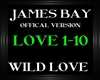 James Bay ~ Wild Love V2
