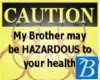 Hazardous Brother