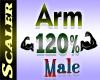 Arm Resizer 120%