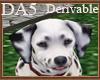 (A) Dalmatian