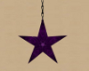purple star V2