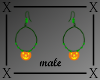 .X. Pumpkin Hoop M