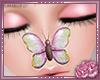 Nose Flutter V4
