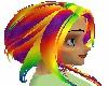 Skys Rainbow Hair &Braid