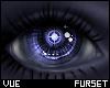 V e Mech Eyes