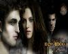 (SS) Twilight New Moon