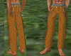 Native Indian Pants