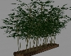 Patio Room Divider Plant