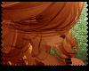 ♡|Somali hair|F5