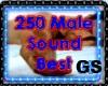 """""""GS"""" 250 MALE SOUND BEST"""