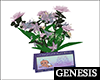 GD BabyCard & Flowers