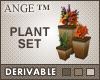 Ange™ 3 Piece Plant Set