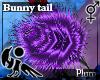 [Hie] Plum bunny tail