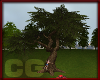(CG)Park Climbing Tree