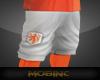 MobInc. - Netherlands V2