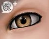 IMVU+ M Eye Brn 0