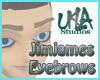 Jimjames Eyebrows