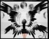 N. Nilyth's Custom Wings