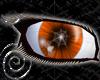 Pumpkin Creep Eyes M