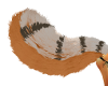 Angel's Ligerfox Tail