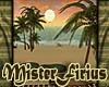Sunset Beach Bundle GRN