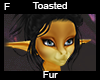 Toasted Fur F