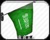 flag saudia arabia