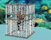Shark Cage *Deep Sea