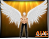 Angel Wings #Animated