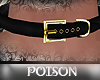 *P* Gold/Blk Belt Choker