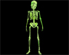 Slimey Green Skeleton