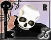 !X Skull Epaulette R