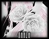 White Rose Bracelets