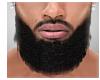 Abdul Beard