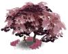 Pink Maple & Swing