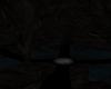 ~L~ Dark Dragon Cave
