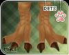 [Pets] Izu | feet
