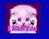 miss you kitty
