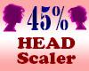 Resizer 45% Head