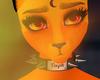 Ignis | Eyes