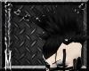 Black Candihawk