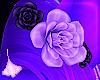 Oxu   Two Tone Flower 3