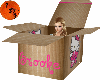 Brooke's nini box